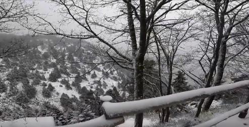 Μήδεια: Live εικόνα από το χιονισμένο Μπάφι – Διεκόπη η κυκλοφορία στη λεωφόρο Πάρνηθος